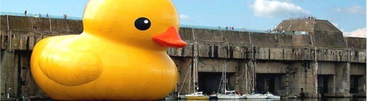 Rubber Duck Rescue/MOB Clinic 04.10.21 12p